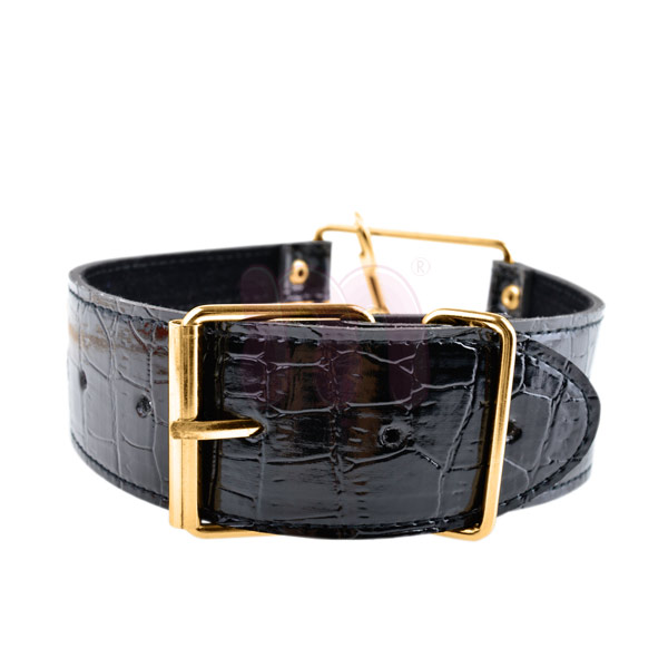Ошейник «Ff gold collar & leash»